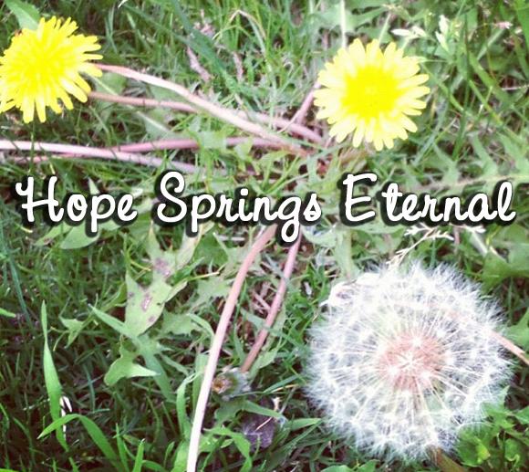 pope essay on man hope springs eternal